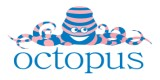 Octopus Montessori, Creche & Afterschool